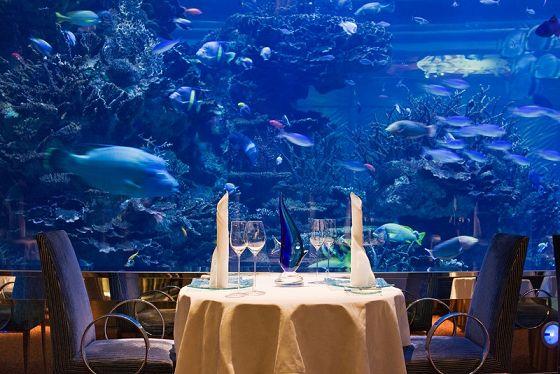 Turismo sottomarino       E' l'ultima tendenza nel settore dei viaggi: hotel e ristoranti con spettacolari vedute del mondo sottomarino! A Dubai, città dove tutto è possibile, ce n'è uno dove puoi mangiare specialità di pesce e ammirare la vita subacquea del Golfo. E' considerata una vera e propria attrazione turistica, anche se non alla portata di tutte le tasche. ♥Insomma, bislacco a 7 stelle!! Vieni a leggere qui: http://pilloline.altervista.org/notizie-bislacche-22c/