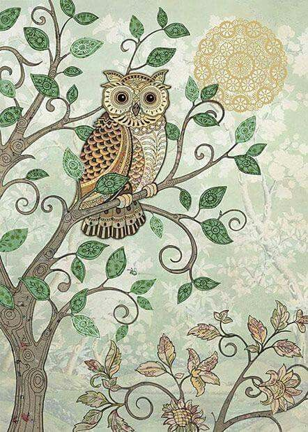 Tarde Owls Owl Art Owl Owl Illustration