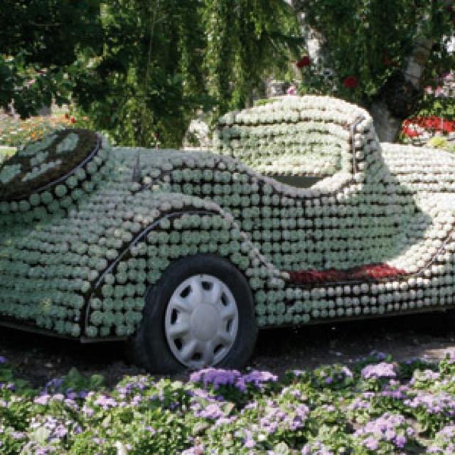Car @ Jesperhus Blomsterpark