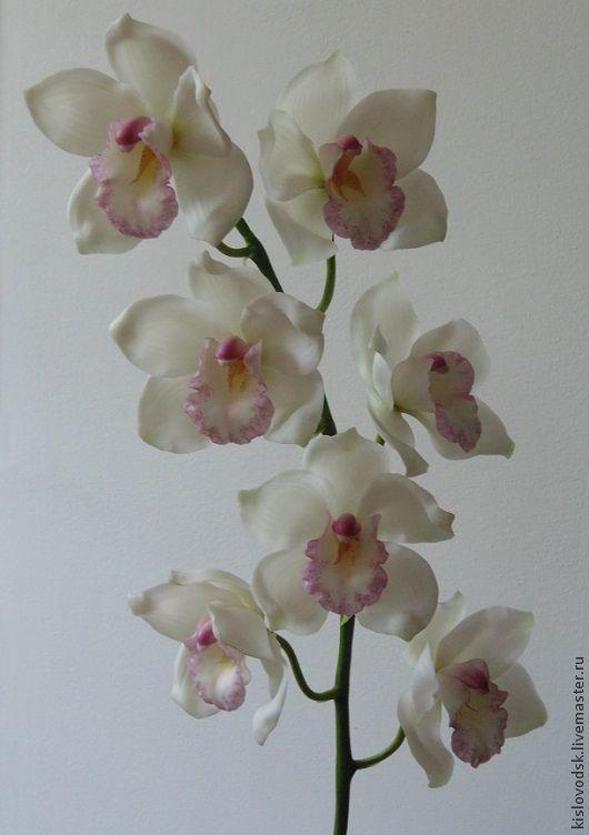 Белая орхидея цимбидиум из полимерной глины. - белый,орхидея,полимерная глина