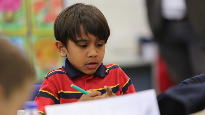 An education expert says there is no evidence that there is any educational benefit to having Indigenous-only schools.