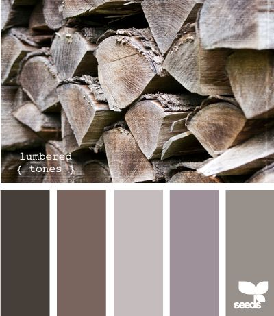 Beautiful Color Combination taken from Aged Wood. Gray, Greige, Brown, Lavender, Light Gray