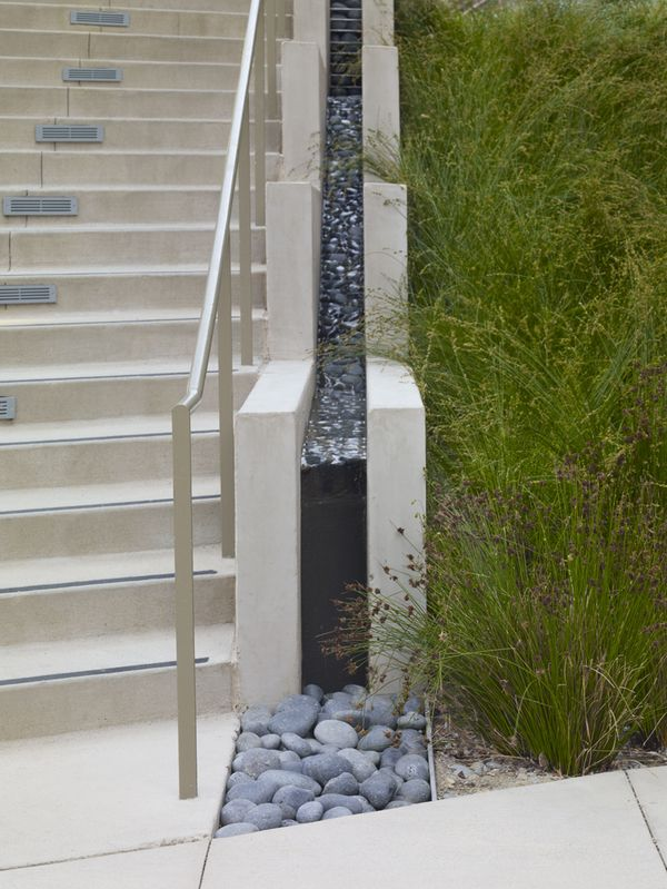 Nueva School by Andrea Cochran Landscape Architecture