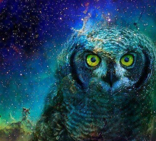 Owl galaxy