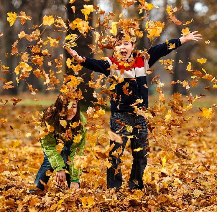 Kids in leaf pile