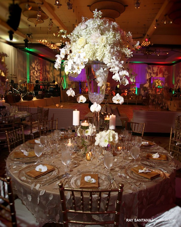 1000 ideas about miami wedding photographer on pinterest wedding pictures wedding. Black Bedroom Furniture Sets. Home Design Ideas