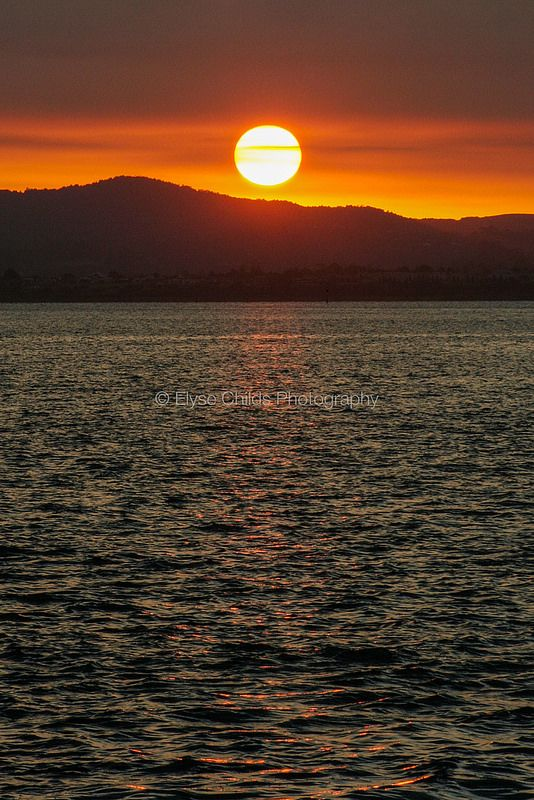 Auckland Sunset   © Elyse Childs Photography