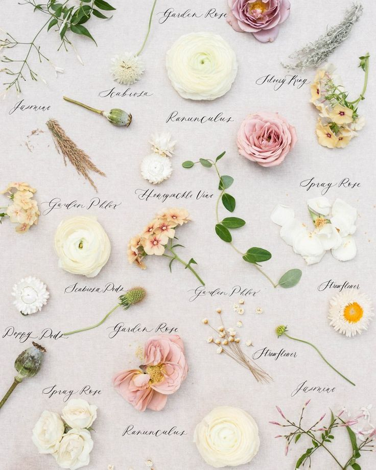 Wedding Flowers Keighley: Wedding Bouquet Preservation In 2020 (With Images
