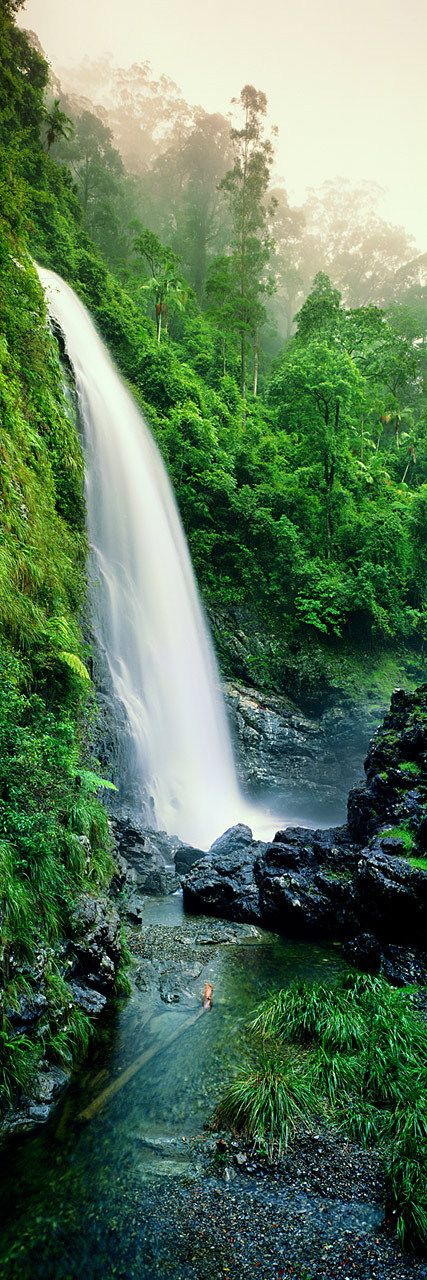 Cedar Falls, Dorrigo, National Park, NSW Australia. | Ken Duncan Photography