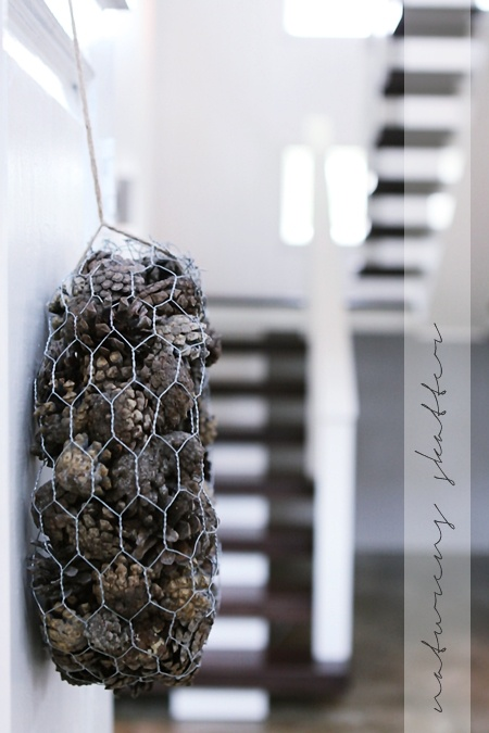 bag o' pinecones. why?