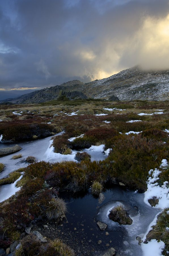 Ice Mist Kosciuszko National Park NSW Australia