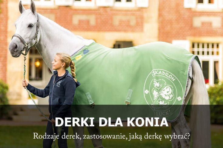 Jaką derkę dla konia wybrać?