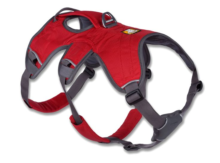Besides being an incredibly safe harness for those shy, spooky Greyhounds, the Ruffwear Web Master Harness is a supportive, multi-use harness for hiking, scrambling, and mobility assistance, like your senior or tripod. Its amazing for steadying your dog on the slick floors at the vet or getting in and out of the car.