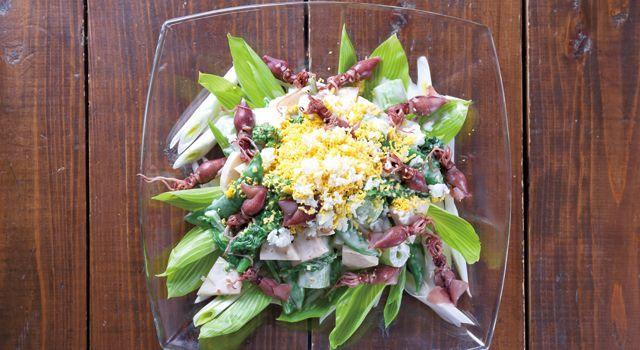 京たけのことほたるいかの春野菜サラダレシピ