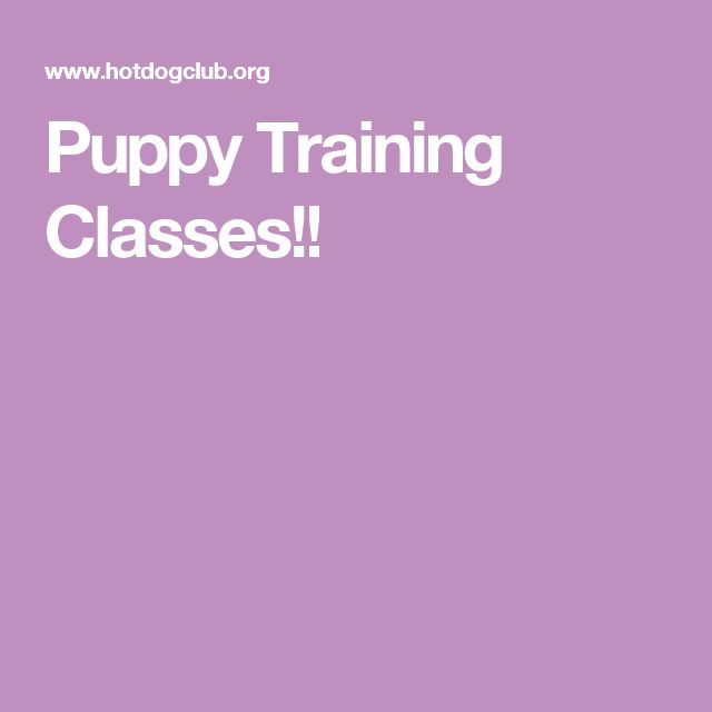 Puppy Training Classes!!
