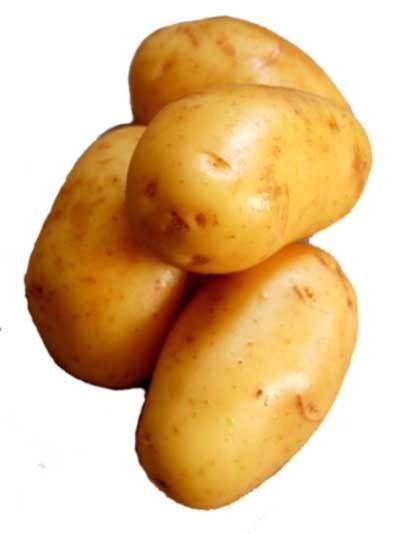 Velveeta Cheesy Chicken Potato Soup, Potato Soup To Die For (And add Broccoli too!)