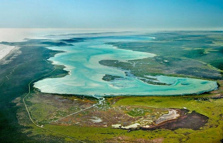 Langebaan Lagoon Natural Reserve in Western Cape (South Africa)