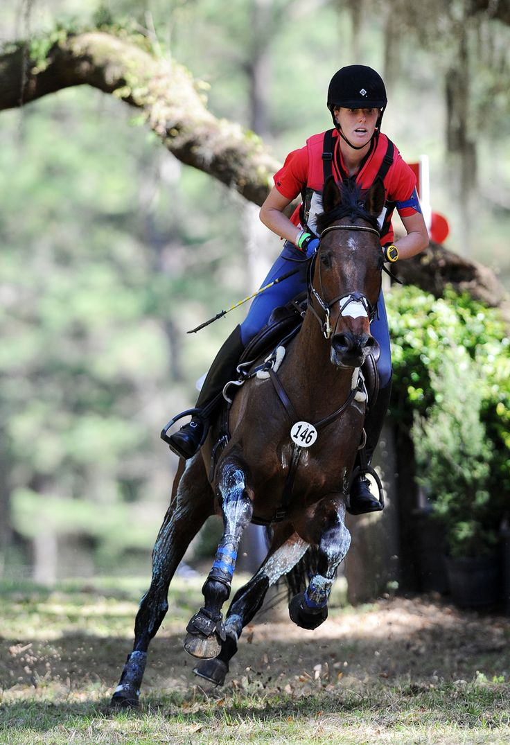 Selena O Hanlon And Thoroughbred A First Romance Boogie On