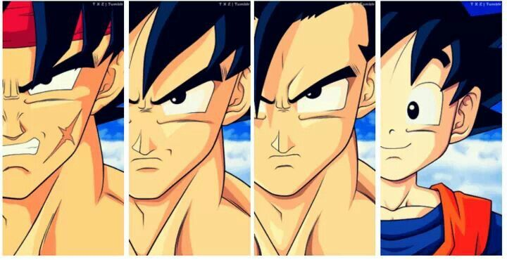 DBZ family. Bardock (grandfather), Goku (father), Gohan (1st son), Goten (2nd son)