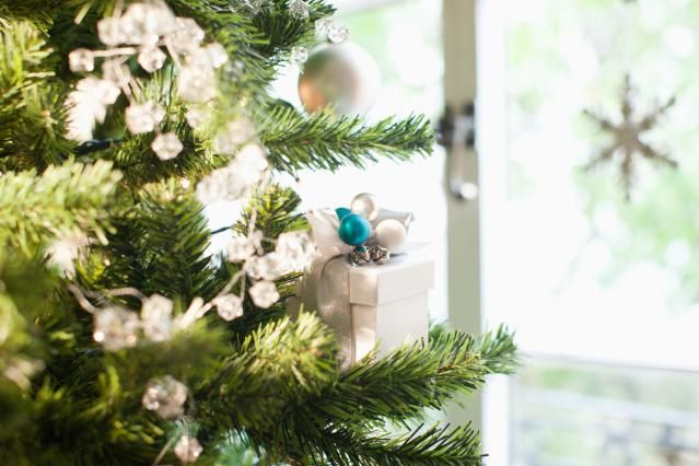 Care for and Keep a Cut Christmas Tree Fresh - Tips for Keeping a Cut Christmas Tree Looking Good Longer