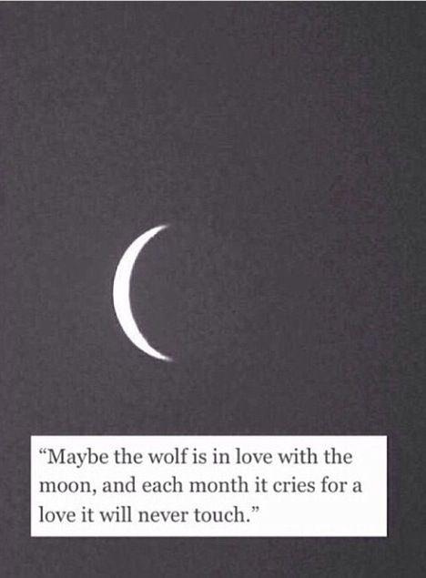 Puede que el lobo esté enamorado de la luna y cada mes llore por un amor que nunca tocará.