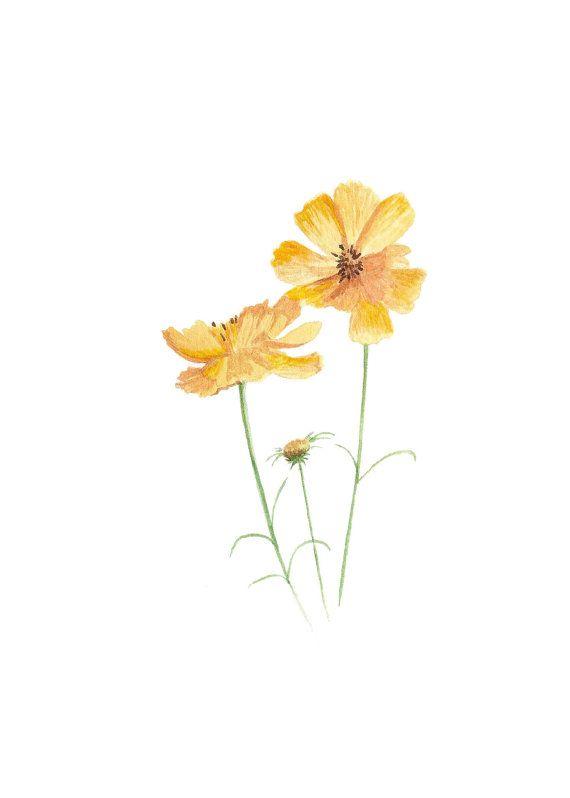 Wildflower Art Print – Botanical Illustration Art – Flower Illustration – Floral Art – Yellow Home Decor – Botanical Print – Nursery Decor   – art