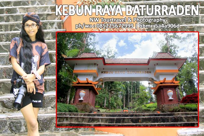 Nurmalia Windy: Destinasi Wisata : KEBUN RAYA BATURRADEN - NW Tour...