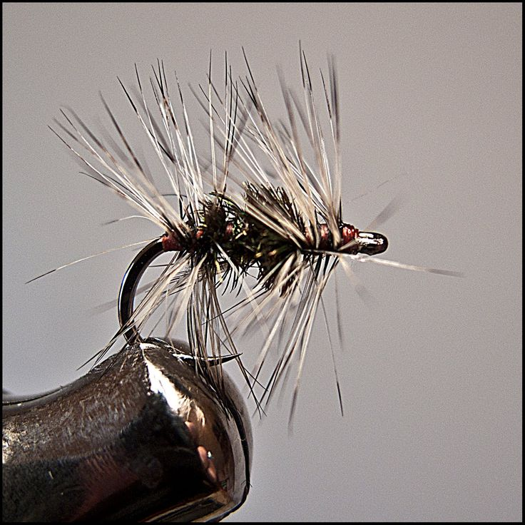 Double Badger - Dry Fly Expert