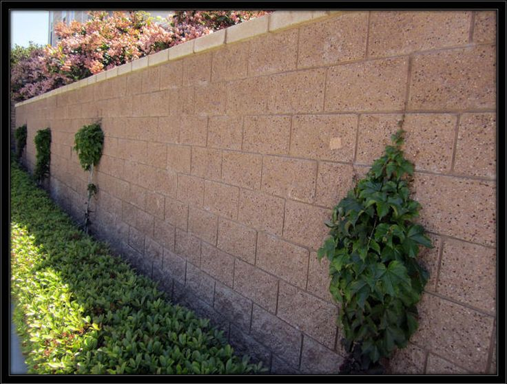 The Best Images About Yard Wall On Pinterest Back Garden - Cinder block wall fence ideas