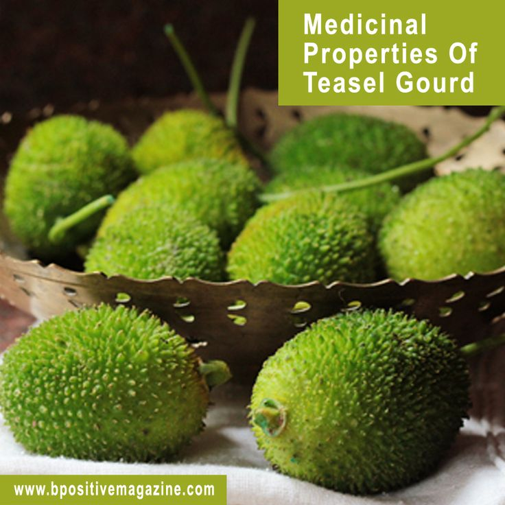 Teasel Gourd is a very Popular #Fruit that helps in lowering #BP. Know Health Benefits and Medical Properties of Teasel Gourd.
