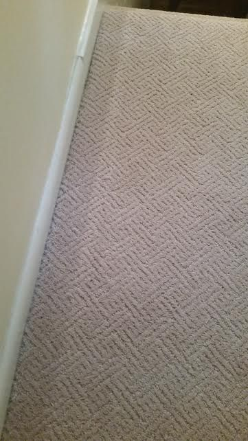 Mohawk carpet: scotch-guard, wear-dated, and made from polyester