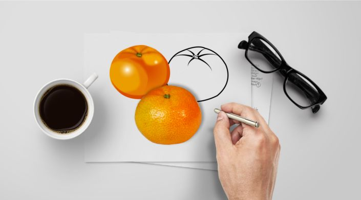 Clementine : Photo, Vector, Black and White Outline