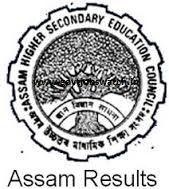 Download Assam 12th Result 2017 here Assam board 12th exam Result 2017, SEBA AHSEC Result 2017 – www.ahsec.nic.in, Seba 12th exam result 2017