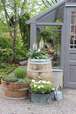 Inspirerande växthus. Del I....och ett tips på var ni kan se bakom kulisserna på hur blomsterarrangemanget på slottet gick till igår.