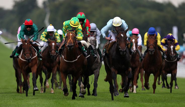 top free horse racing tips