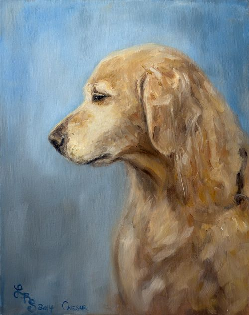 Golden Retriever, Lydia Rose Spencer - Lydia Rose Fine Art #dog #painting #portrait #lydiarosefineart #lydiarosespencer