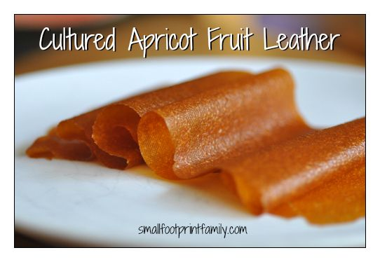 """Cultured Apricot Fruit Leather - A probiotic-rich """"grab and go"""" snack!"""