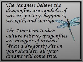 Spiritual Dragonfly                                                                                                                                                                                 More