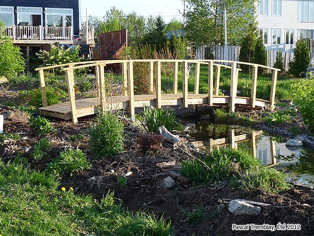 Homemade bridges over creeks build arched bridge for for Water garden construction
