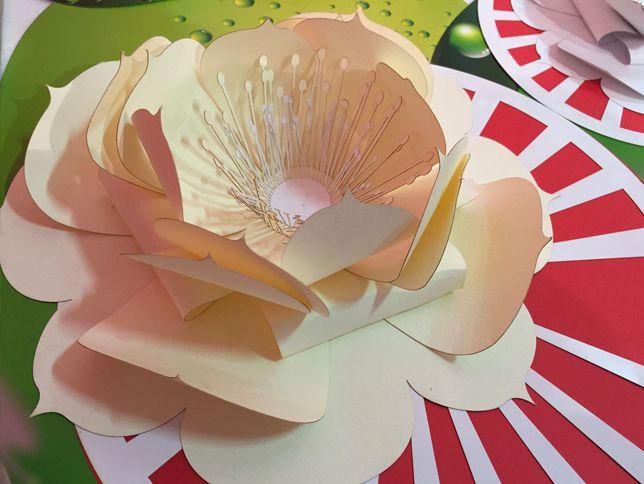 Ninfea -  ornamento