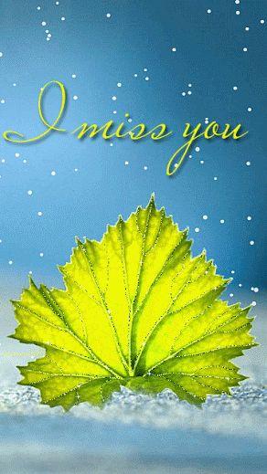 Décent souvenir de l'image: Miss You