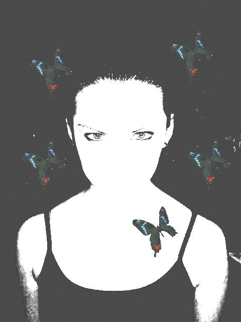 Mariposas de 2004 http://bit.ly/1QcIMbN