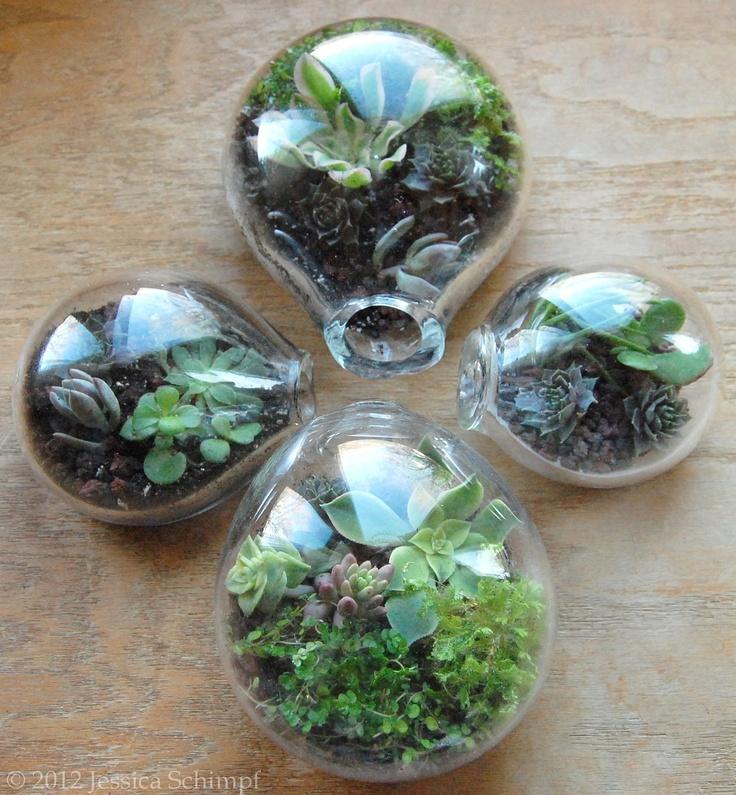 Blown Glass Terrarium Succulents By MantraGlass On Etsy, $59.99 Part 93