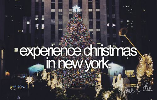 I just told the bf that ;): Christmas Time, Oneday, Time Squares, Buckets Lists, New York Cities, Ice Skating, New Years Eve, Newyork, Christmas Trees