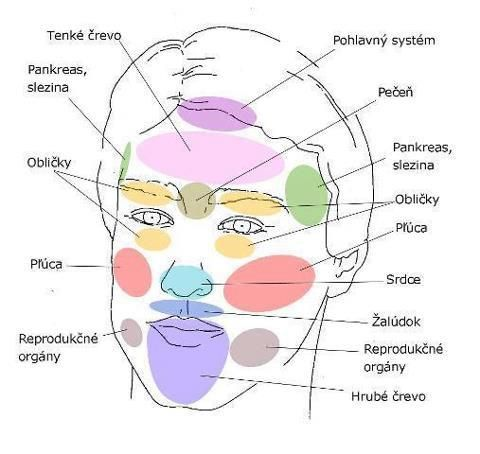 Obličej jako zrcadlo našich orgánů - Slunečný život