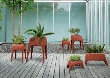 Perfect for contemporary homes: Safari Planters