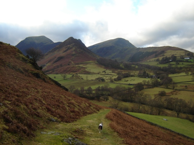 The Borrowdale Valley