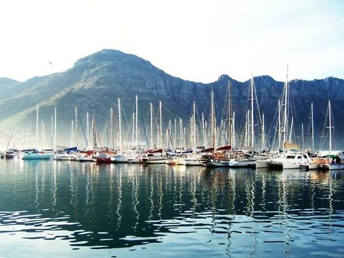 Harbor life