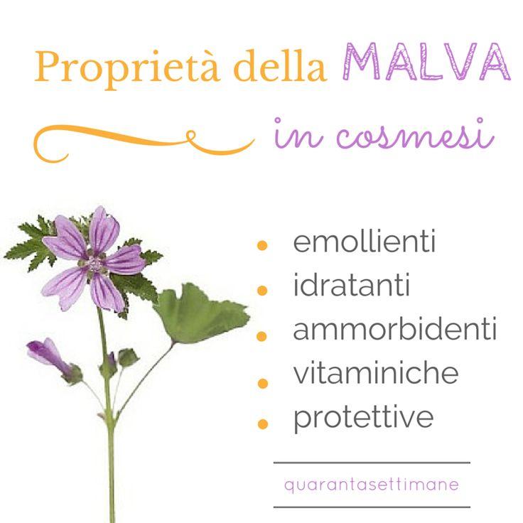 Infografica: le proprietà della malva in cosmesi. #NatiNaturali #QuarantaSettimane #Biocsomesi www.quarantasettimane.it