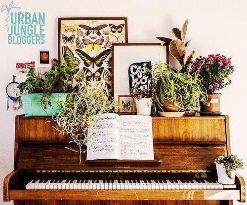 bold.color.glass | Urban Jungle Bloggers – Plant Shelfie | http://boldcolorglass.com